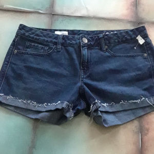 Gap 1969 Dark Wash Denim Shorts